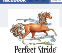 Perfect Stride is on Facebook