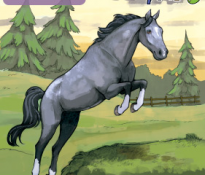 Name That Horse (Horse #7)