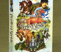 A Great Evaluation of Perfect Stride by WTS Toy Review
